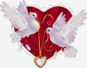 Голуби - символ любви и верности