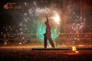 Пиротехническое шоу от Fire Spirit фото 2